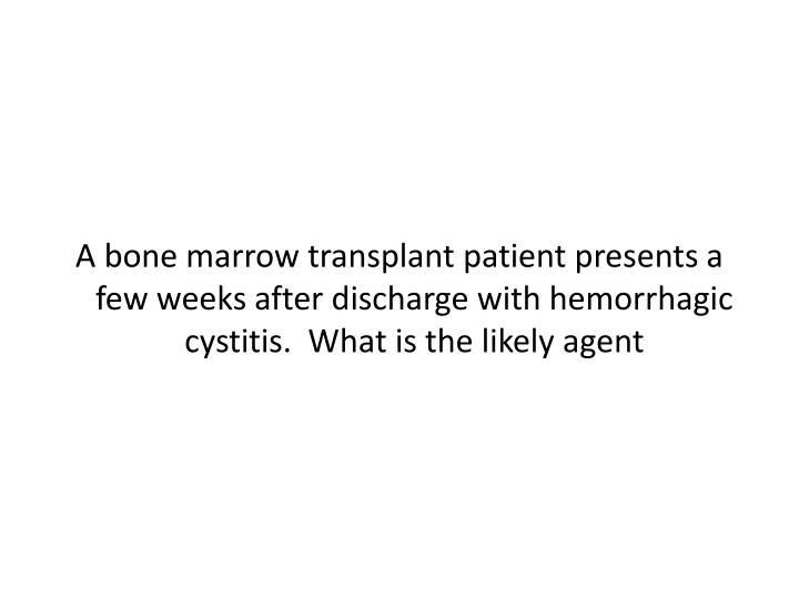 A bone marrow transplant patient presents a few weeks after discharge with hemorrhagic cystitis.  What is the likely agent