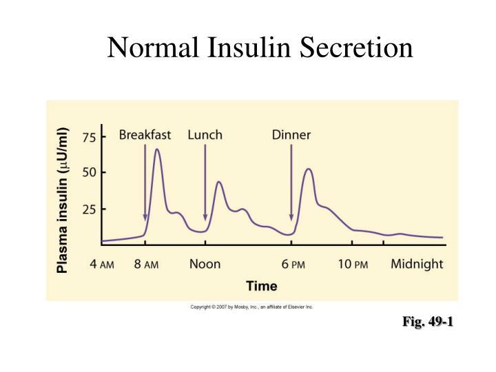 Normal Insulin Secretion