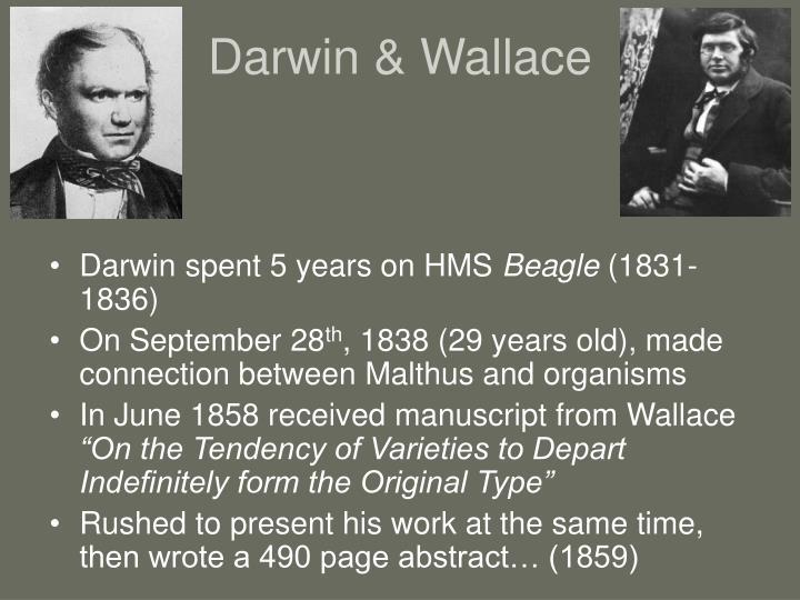 Darwin & Wallace