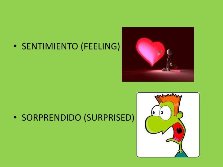 SENTIMIENTO (FEELING)