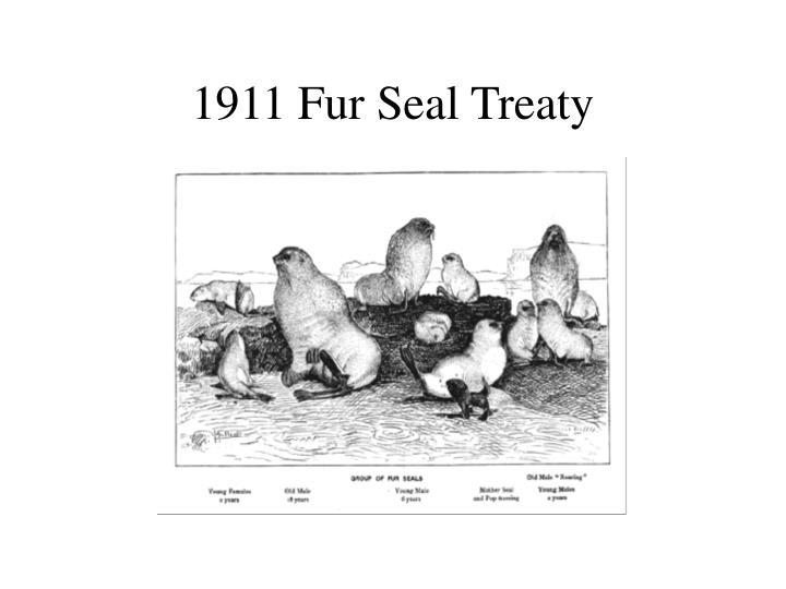 1911 Fur Seal Treaty
