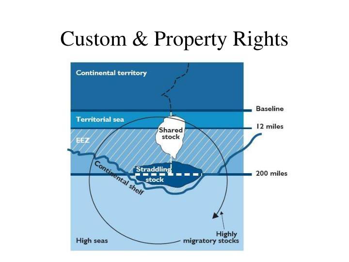 Custom & Property Rights
