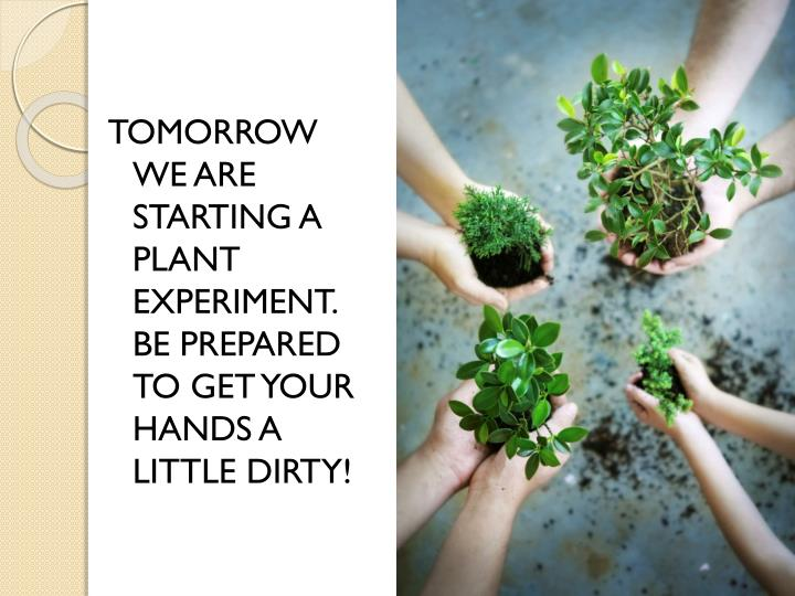 TOMORROW WE ARE STARTING A PLANT EXPERIMENT. BE PREPARED TO GET YOUR HANDS A LITTLE DIRTY!