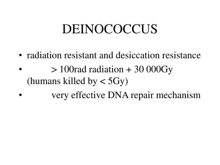 DEINOCOCCUS