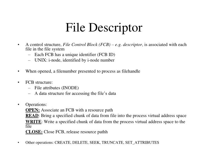File Descriptor