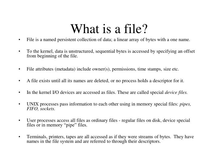 What is a file