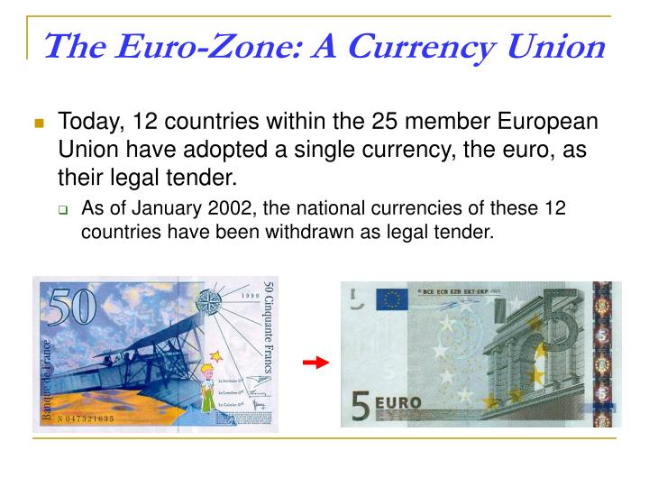 The Euro-Zone: A Currency Union