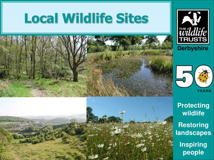 Local wildlife sites