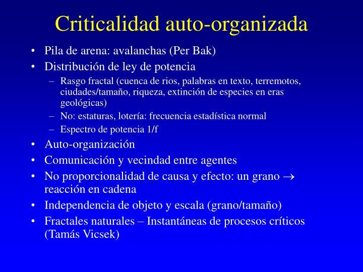 Criticalidad auto organizada