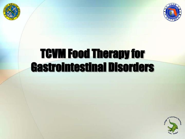 tcvm food therapy for gastrointestinal disorders n.