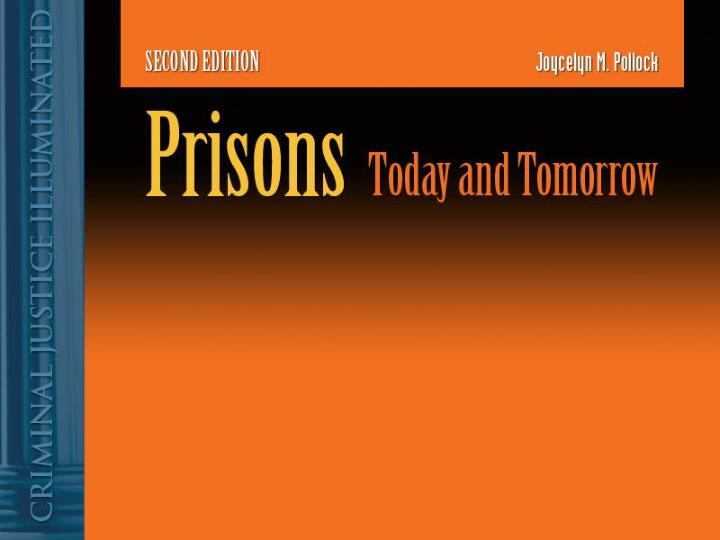 the privatization of american prisons essay Name course tutor date privatization of prisons private privatization of prisons - essay the smoking and possession of marijuana in some american states.