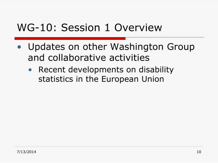 Updates on other Washington Group and collaborative activities