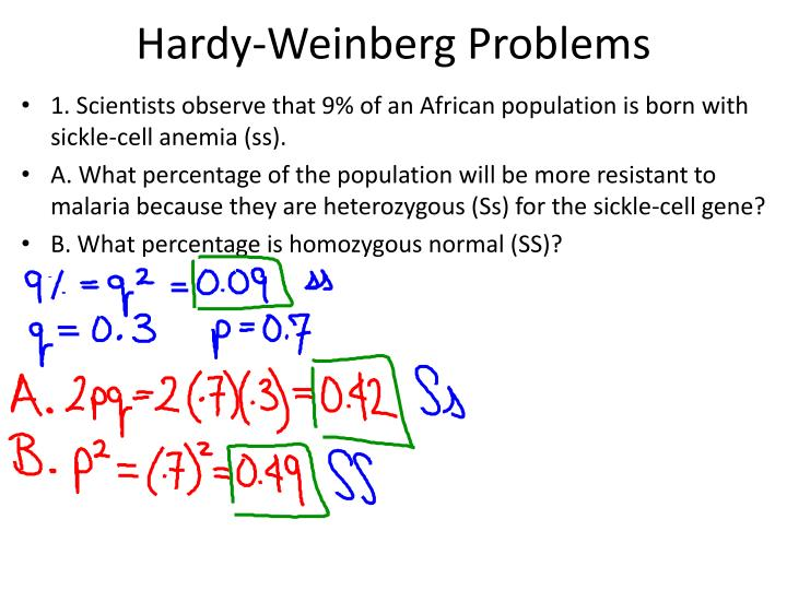 PPT - Hardy-Weinberg Problems PowerPoint Presentation - ID ...