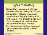 types of custody