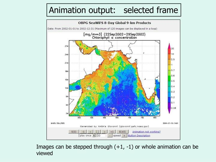 Animation output:   selected frame