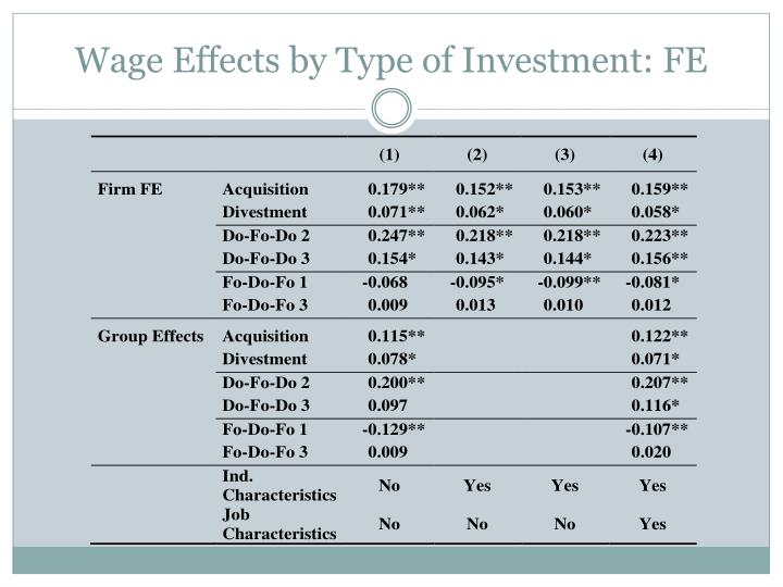 Wage Effects by Type of Investment: FE