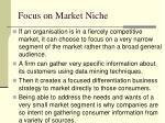 focus on market niche