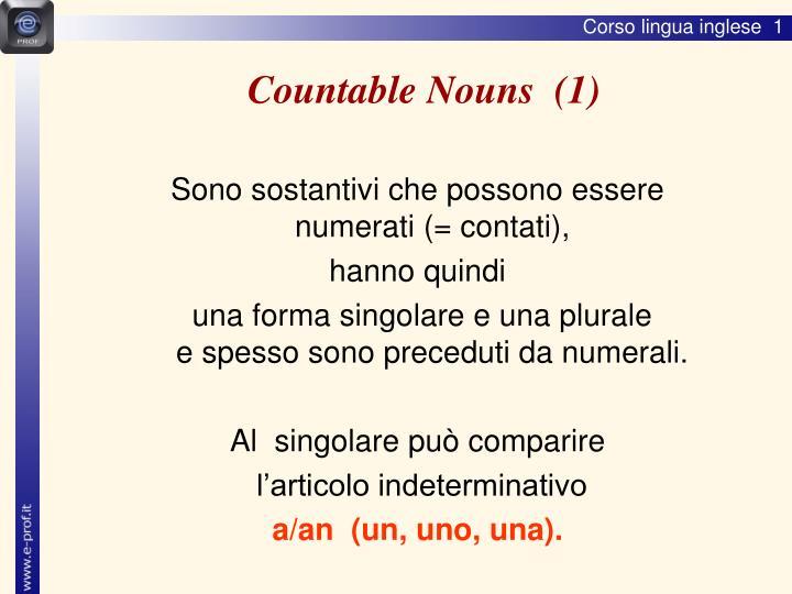 Countable Nouns  (1)