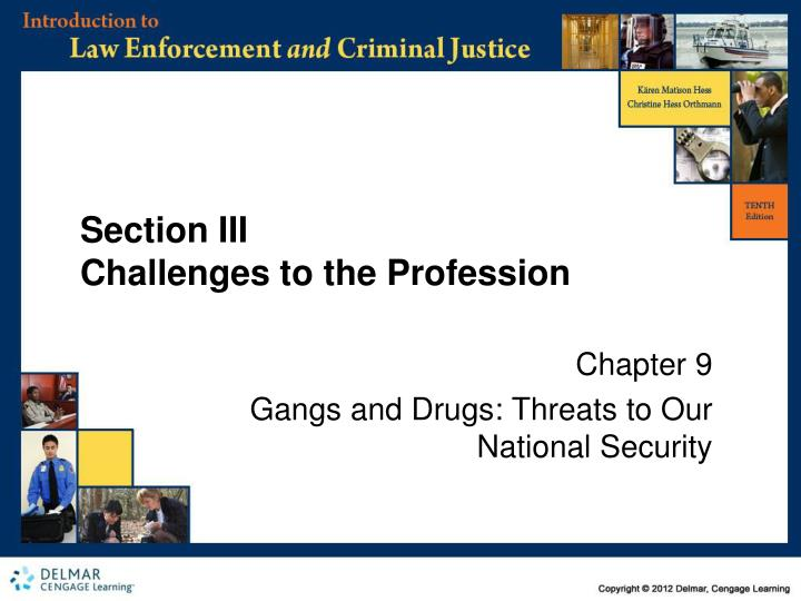 section iii challenges to the profession n.