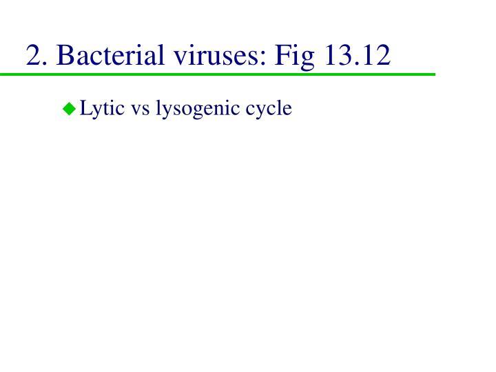 2. Bacterial viruses: Fig 13.12