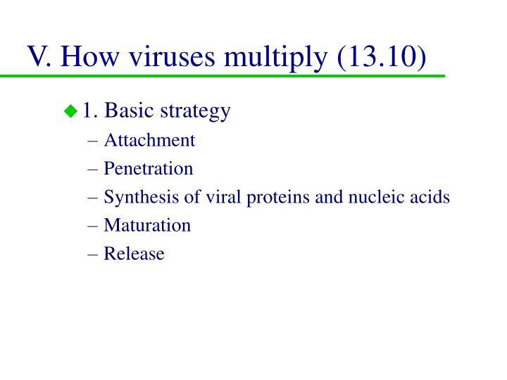 V. How viruses multiply (13.10)