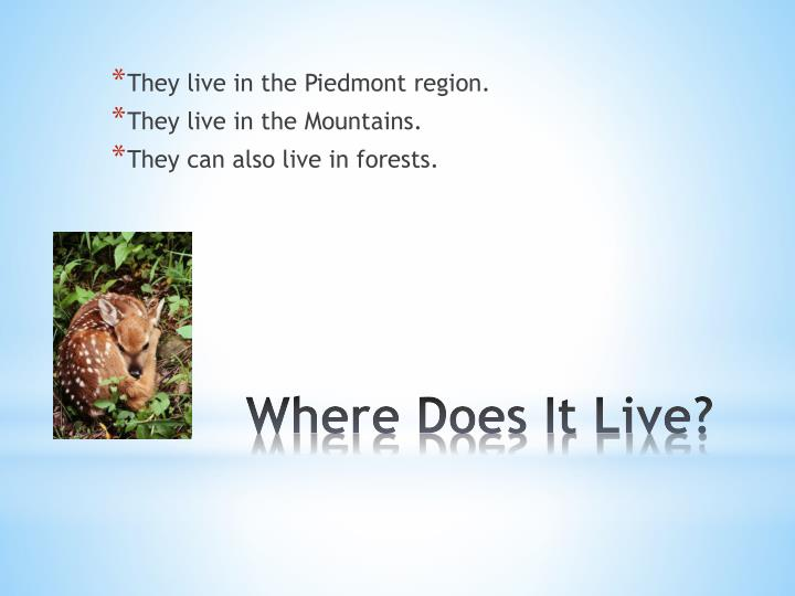 They live in the Piedmont region.