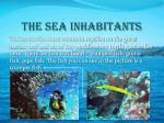 the sea inhabitants