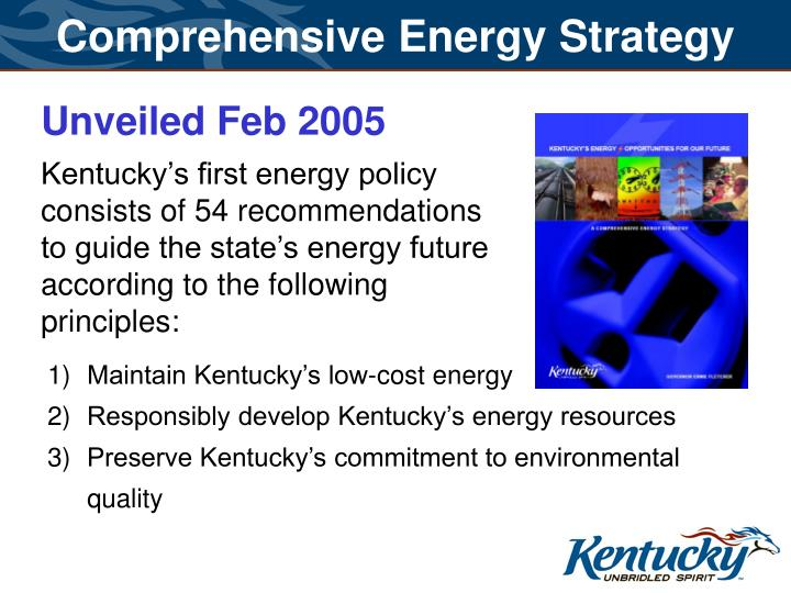 Comprehensive Energy Strategy