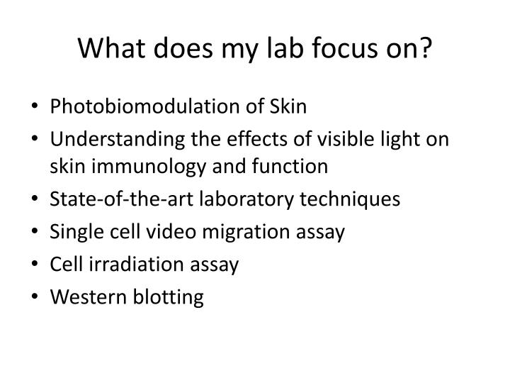 What does my lab focus on?