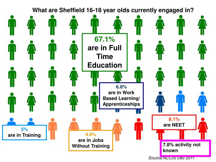What are Sheffield 16-18 year olds currently engaged in?