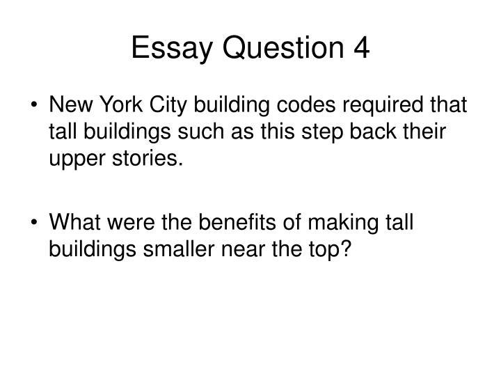 Essay Question 4