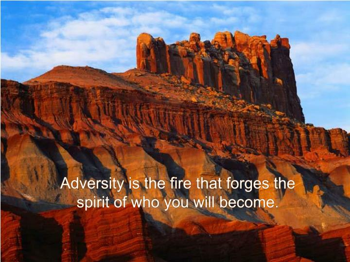 Adversity is the fire that forges the spirit of who you will become.