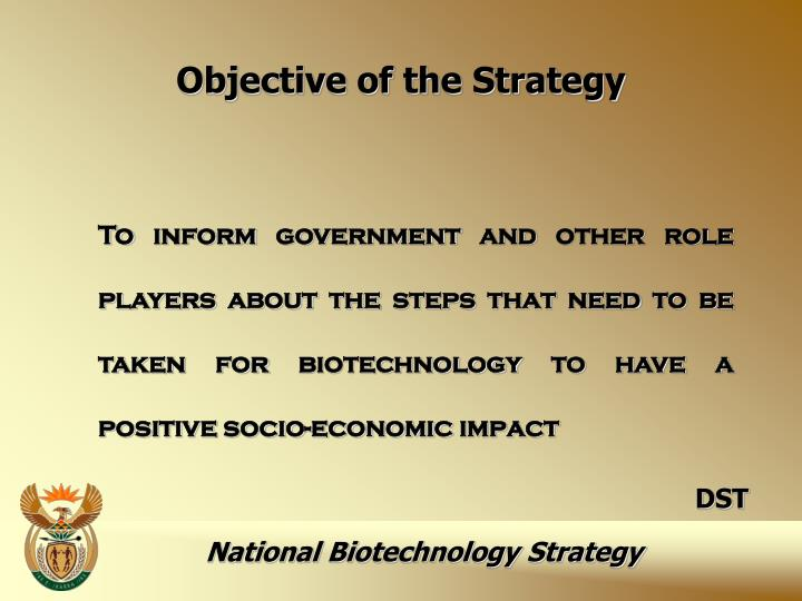 Objective of the Strategy