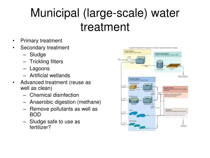 Municipal Water Treatment : Ppt the very basics of microbial ecology powerpoint