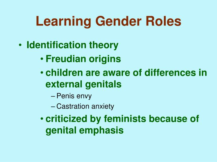 gender role identification theories essay Essay/term paper: gender roles essay, term paper, research paper: gender see all college papers and term papers on gender free essays available online are good but.