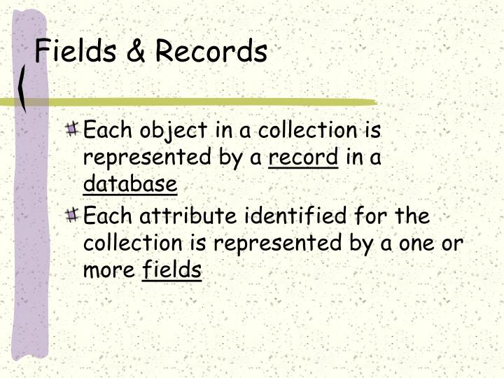 Fields & Records