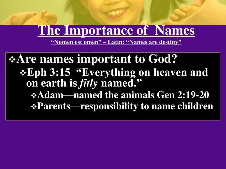 The importance of names nomen est omen latin names are destiny