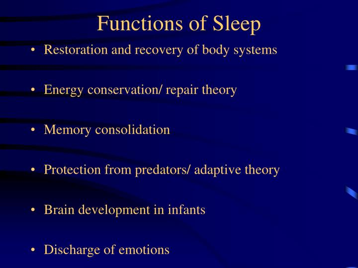 Functions of Sleep