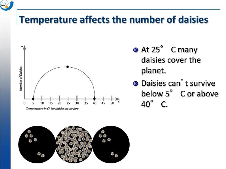 Temperature affects the number of daisies