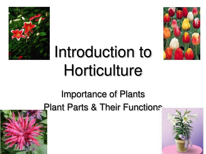 introduction to horticulture n.