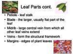 leaf parts cont