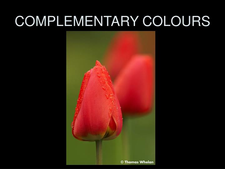 COMPLEMENTARY COLOURS