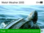 welsh weather 20553
