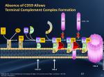 absence of cd59 allows terminal complement complex formation