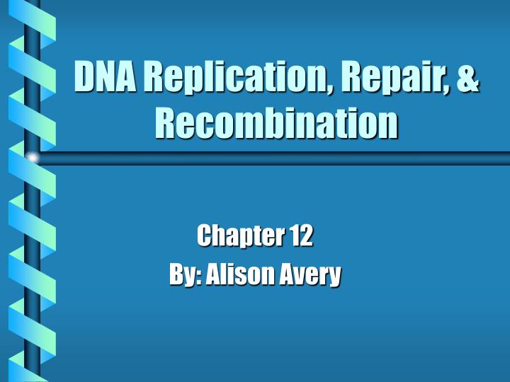dna replication repair recombination