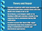theory and repair
