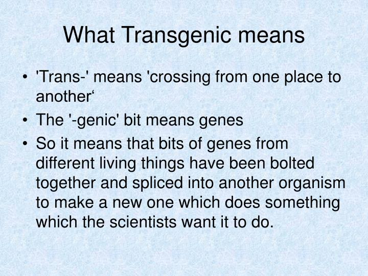 What Transgenic means