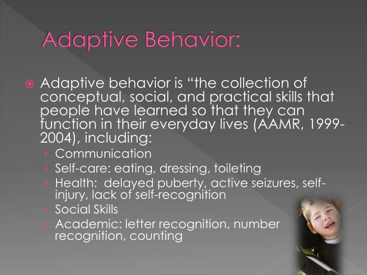 Adaptive Behavior: