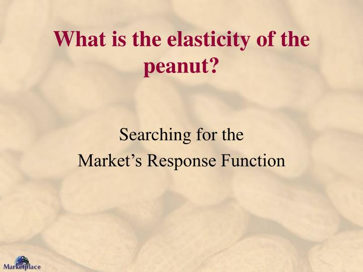 What is the elasticity of the peanut?