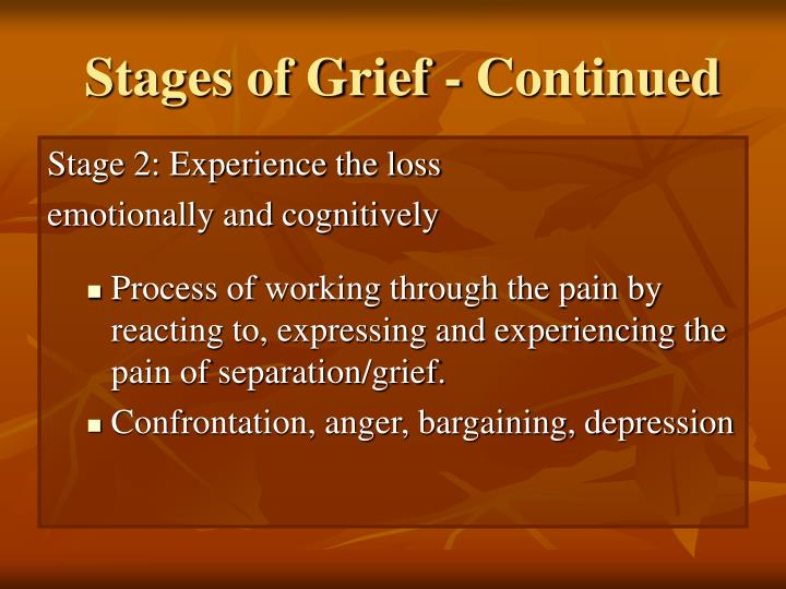 Stages of Grief - Continued